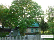 Сдается обжитый дом с землей,  с хоз. постройками,  15 км от Жлобина