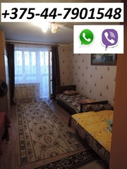 Сдам 1-но комнатную квартиру в Жлобине на сутки. ул.Карибского. мк-н Лебедевка Юг